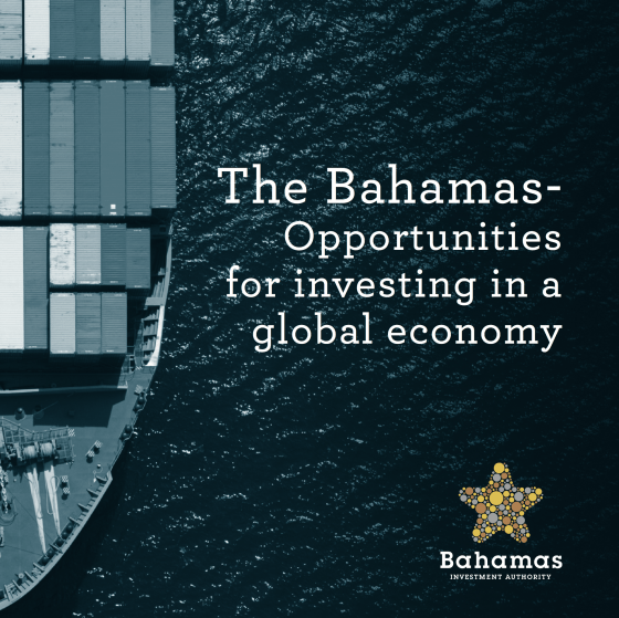 IFF Invest_Bahamas Investment Authority_BIA_Guide_Download Image