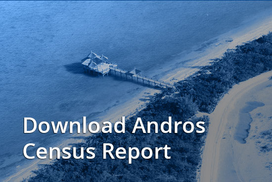 IFF Islands_Andros Census Report_Download_Image